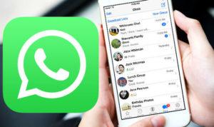Cara menonaktifkan status online whatsapp